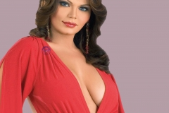 rakhi-sawant-hot-still_0