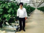 Paramjit Singh cucumber king