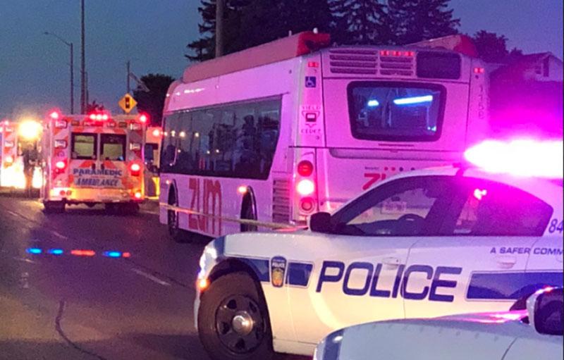 Brampton Transit stabbing